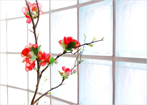 静物としての花