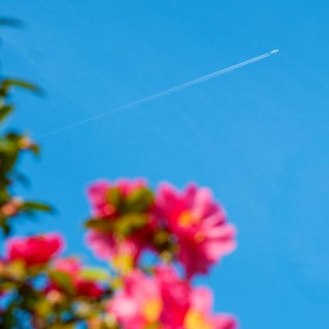 飛行機雲 ―軌跡―