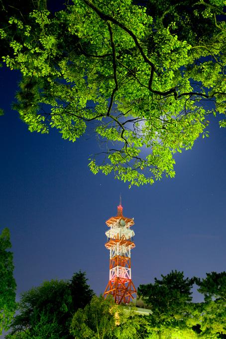 お城公園と赤い鉄塔 写真