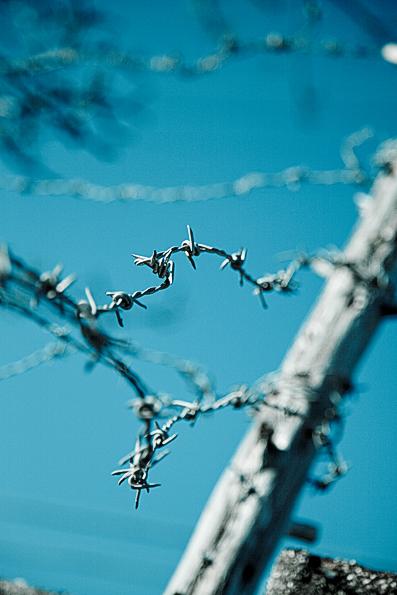 物質の記憶 ―有刺鉄線の場合―