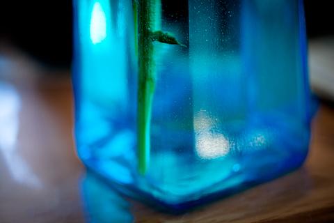 部屋の花瓶