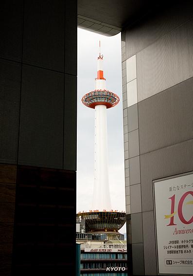 京都駅から望む京都タワー 写真