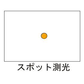 spot.jpg
